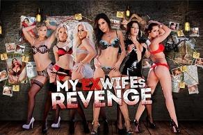 My Ex-wife's Revenge