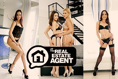 The Real Estate Agent