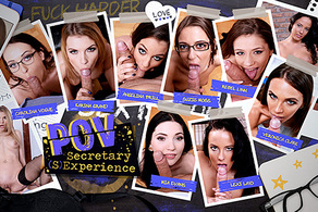 POV Secretary (S)Experience